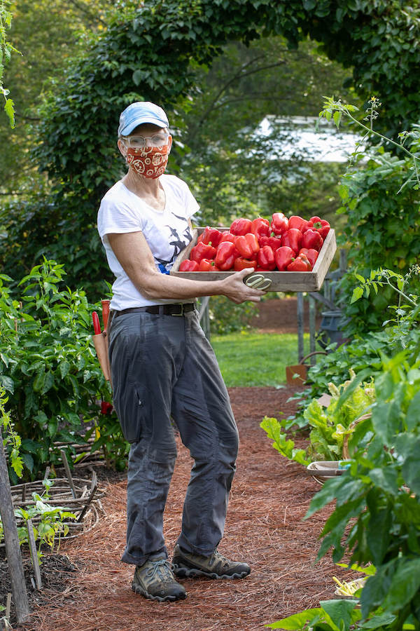 A woman shows off a container full of red peppers in the Vegetable Garden which will be shared with local community organizations.