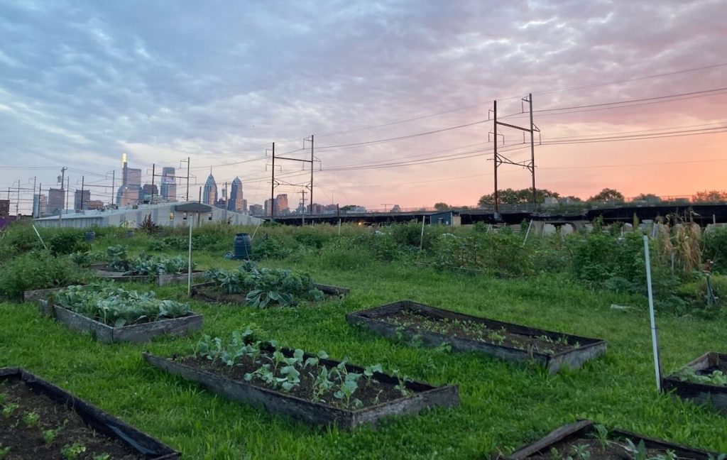 An urban garden in Philadelphia shown at sunset and with the city skyline in the background.